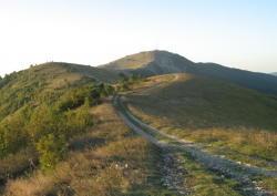 В горах Геленджика